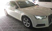 Bán Audi A4 đời 2016, màu trắng, xe nhập chính chủ giá 1 tỷ 420 tr tại TT - Huế